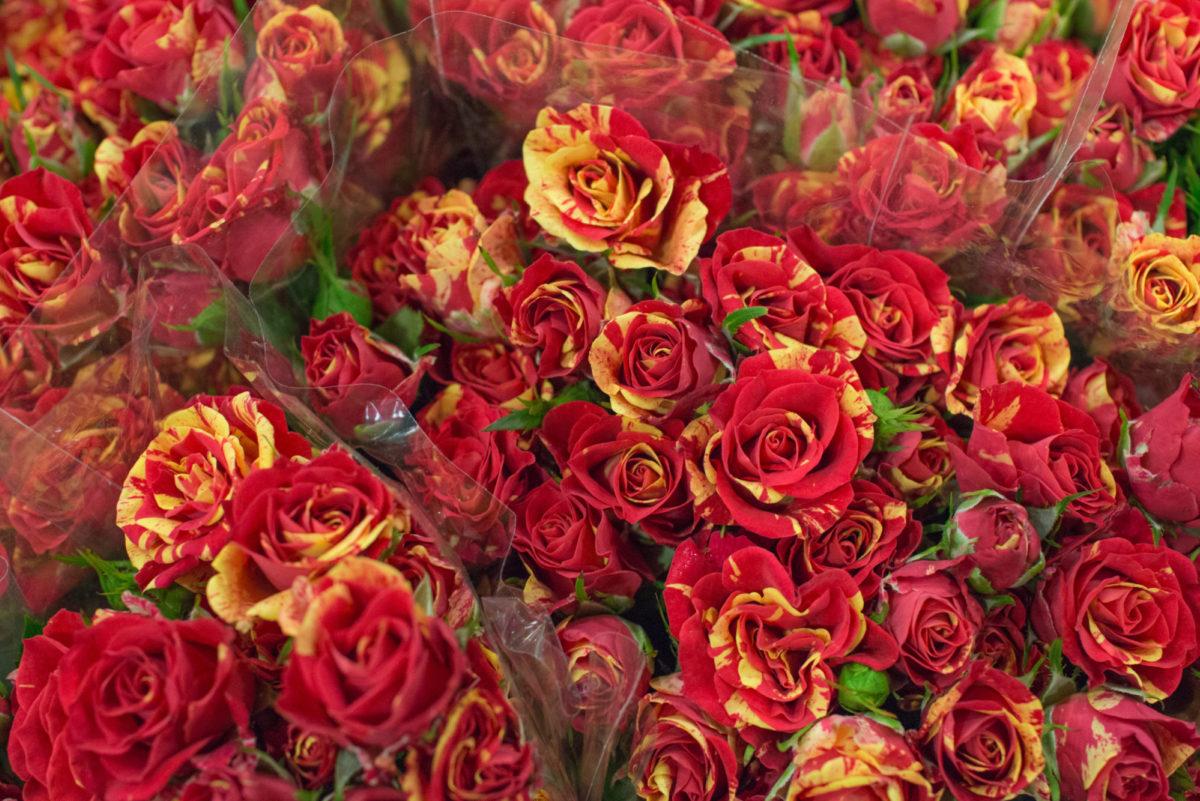 New Covent Garden Flower Market October 2016 Market Report Flowerona Hr A 43