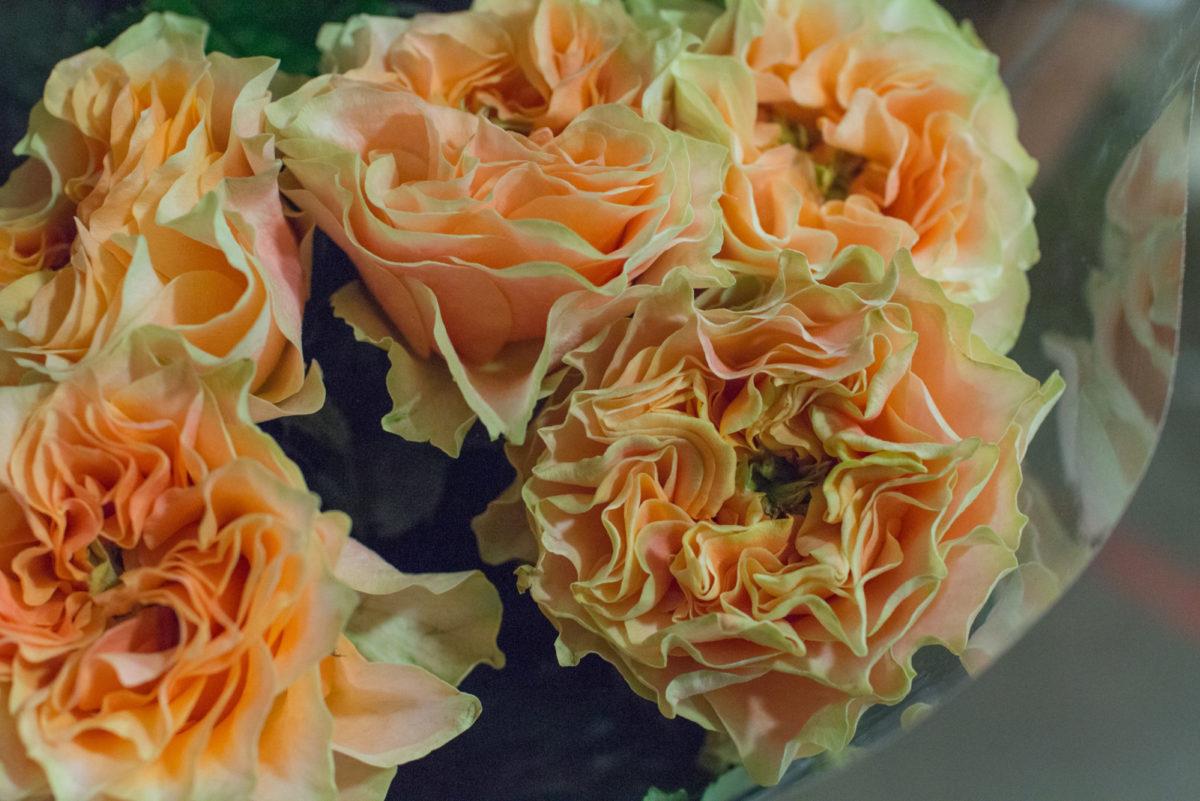 New Covent Garden Flower Market October 2016 Market Report Flowerona Hr A 44