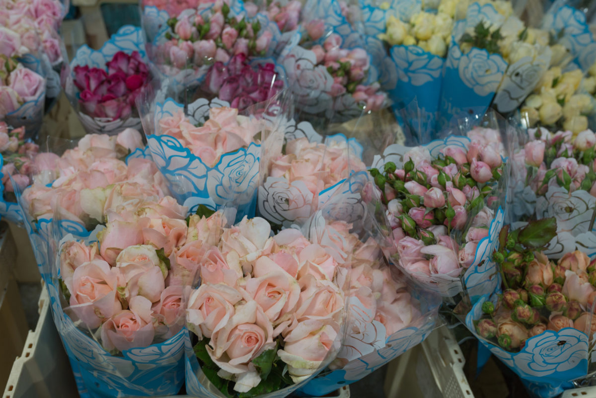 New Covent Garden Flower Market September 2017 Flower Market Report Rona Wheeldon Flowerona British Roses At Zest Flowers 3