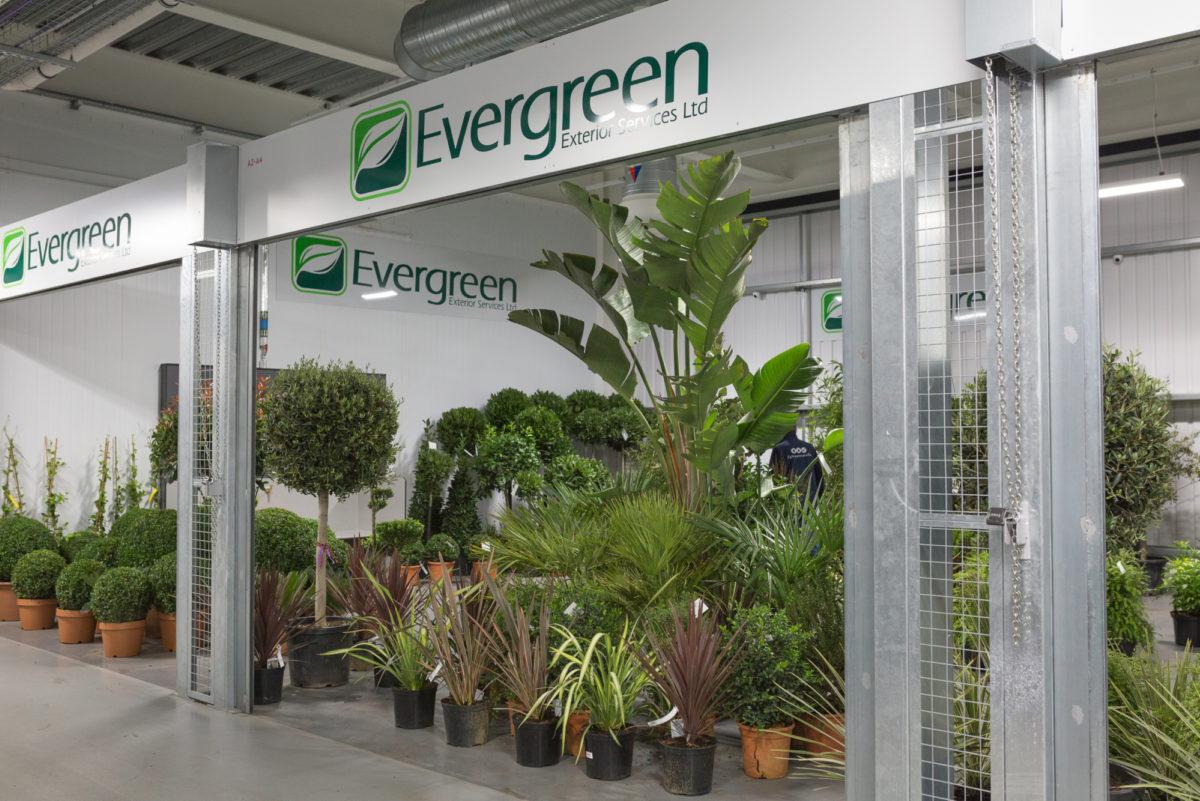 New Covent Garden Flower Market September 2017 Flower Market Report Rona Wheeldon Flowerona New Evergreen Unit 26