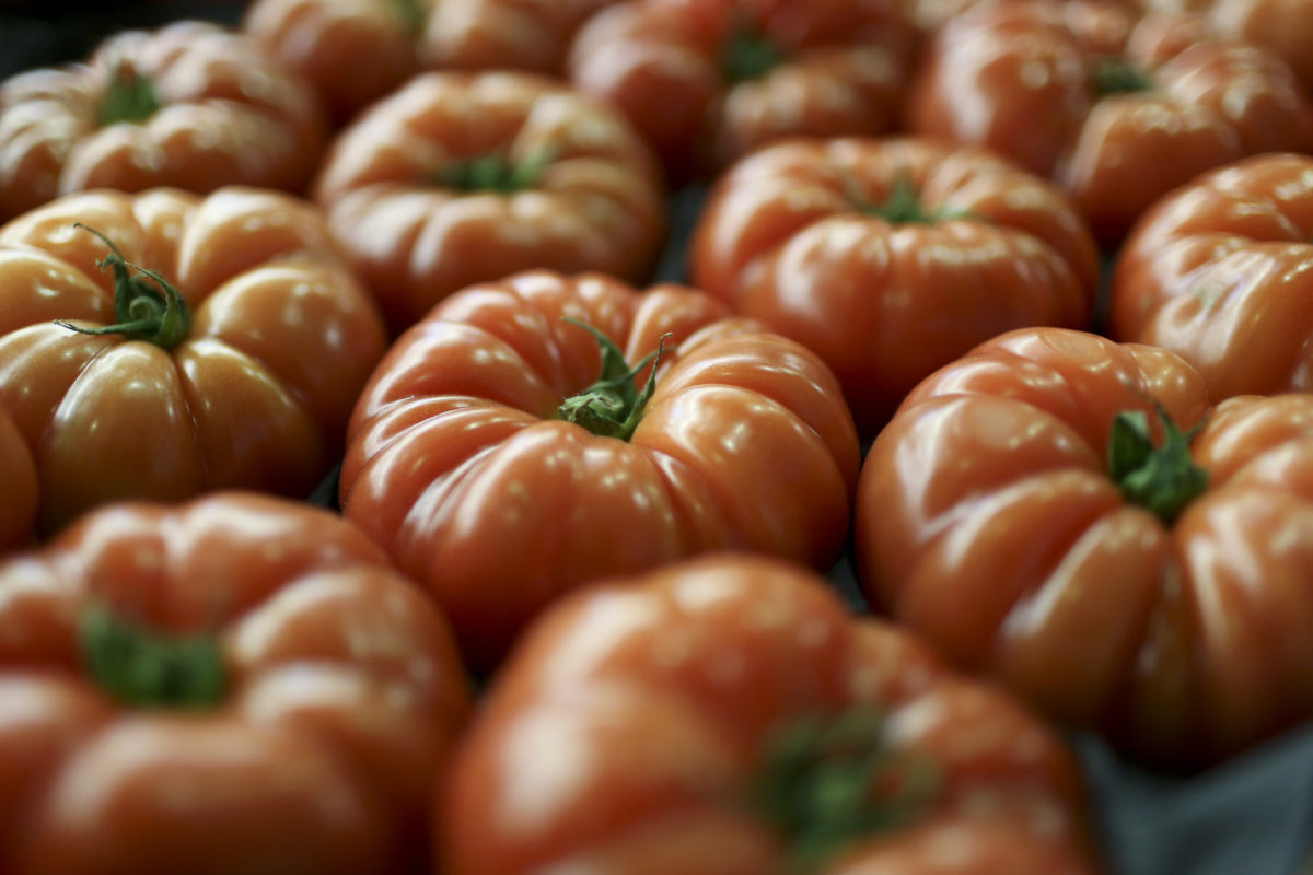 Fruit And Veg Market Report April 2017 Beefheart Tomatoes
