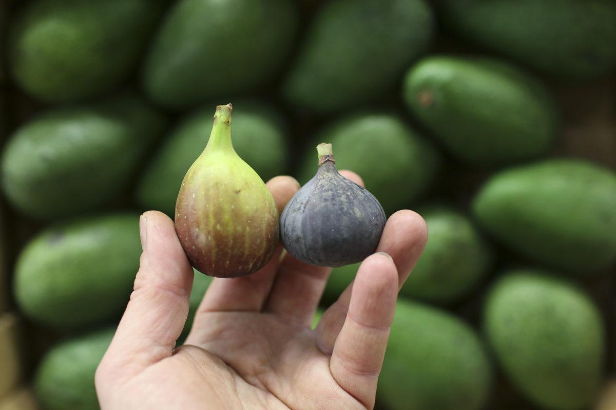 Fruit And Veg Market Report April 2017 Figs
