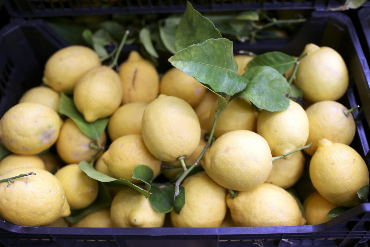 Fruit And Veg Market Report April 2017 Leafy Lemons