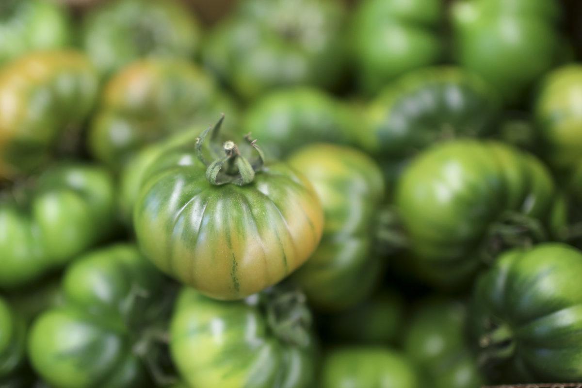 Fruit And Veg Market Report April 2017 Pachino Tomato