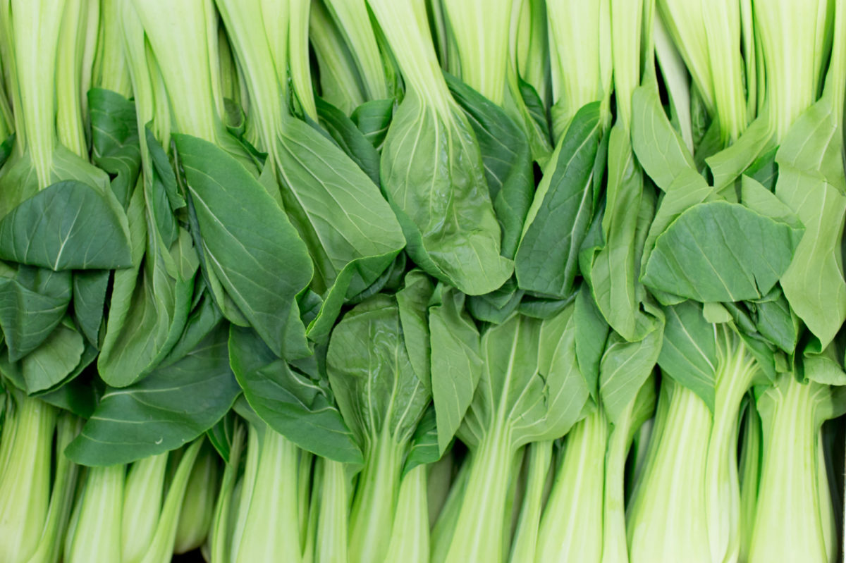 Fruit And Veg Market Report July 2017 Pak Choi