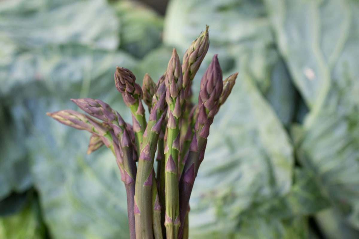 Fruit And Veg Market Report July 2017 Purple Asparagus