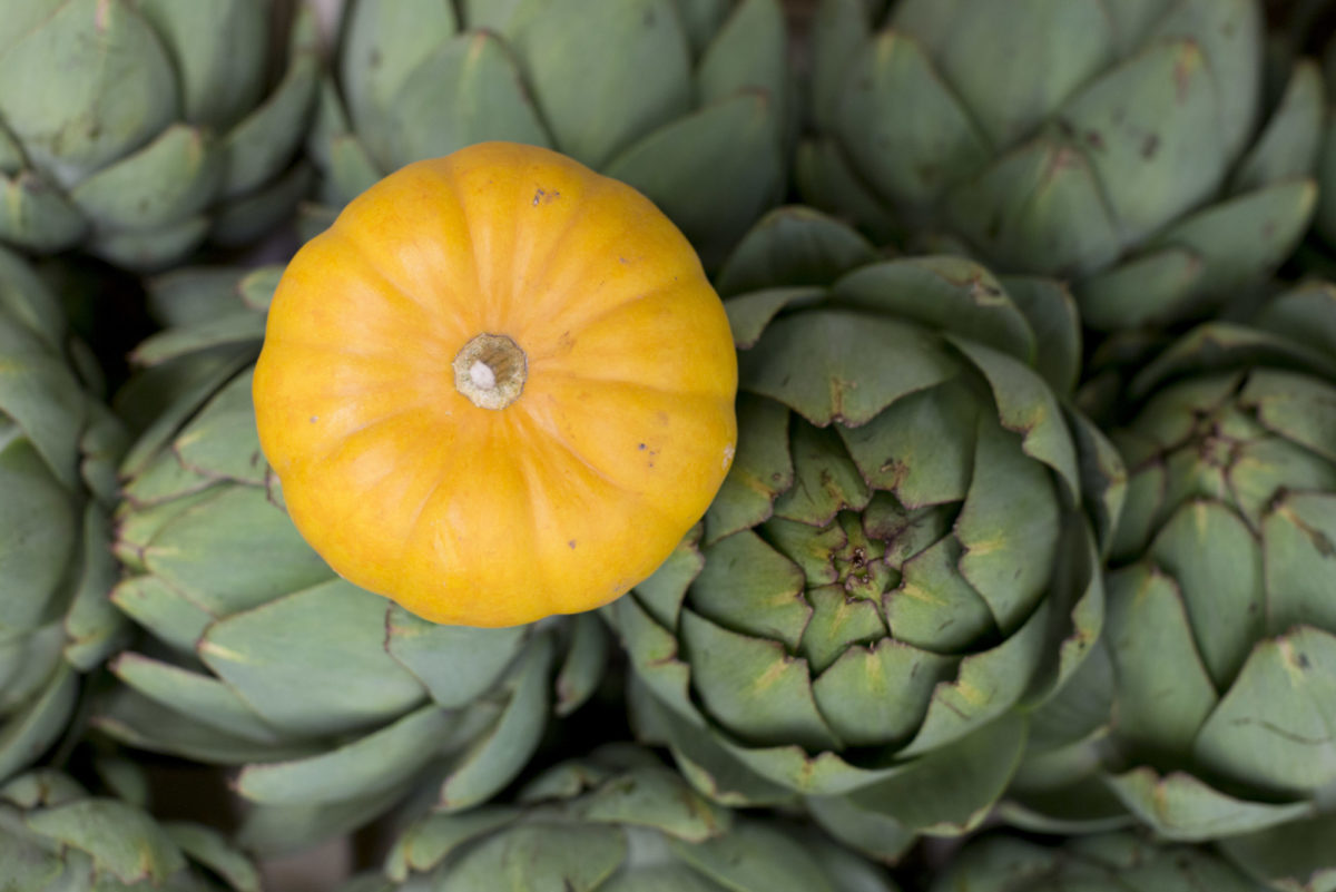 Fruit And Veg Market Report October 2016 Artichoke