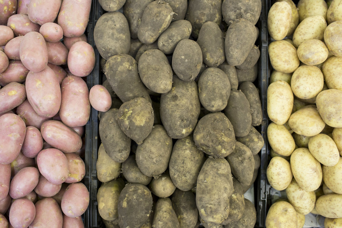 Fruit And Veg Market Report October 2016 Potatoes