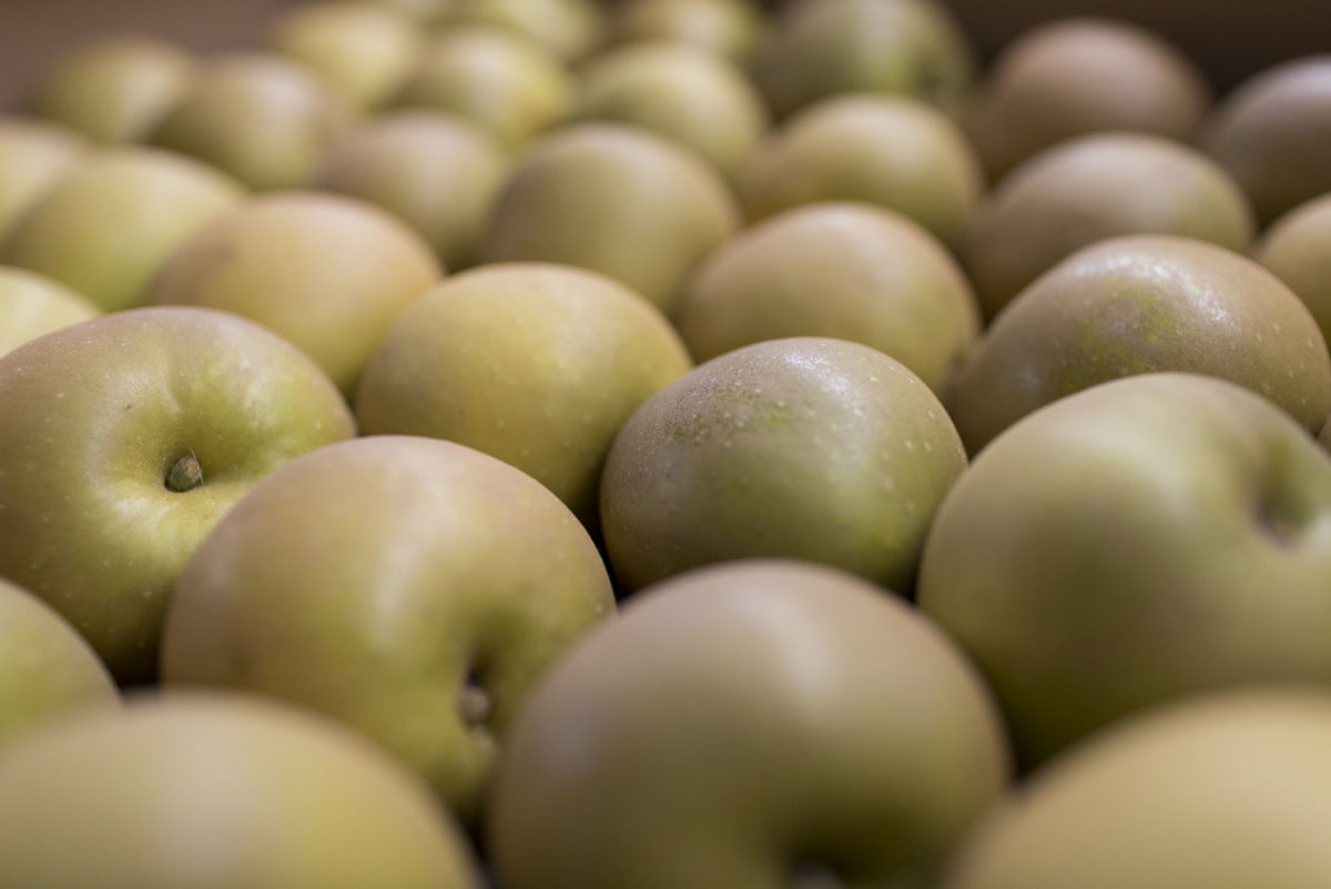 Fruit And Veg Market Report October 2016 Russet Apples