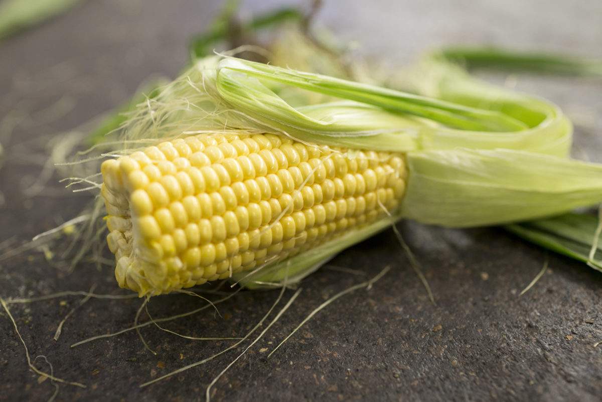 Fruit And Veg Market Report October 2016 Sweetcorn