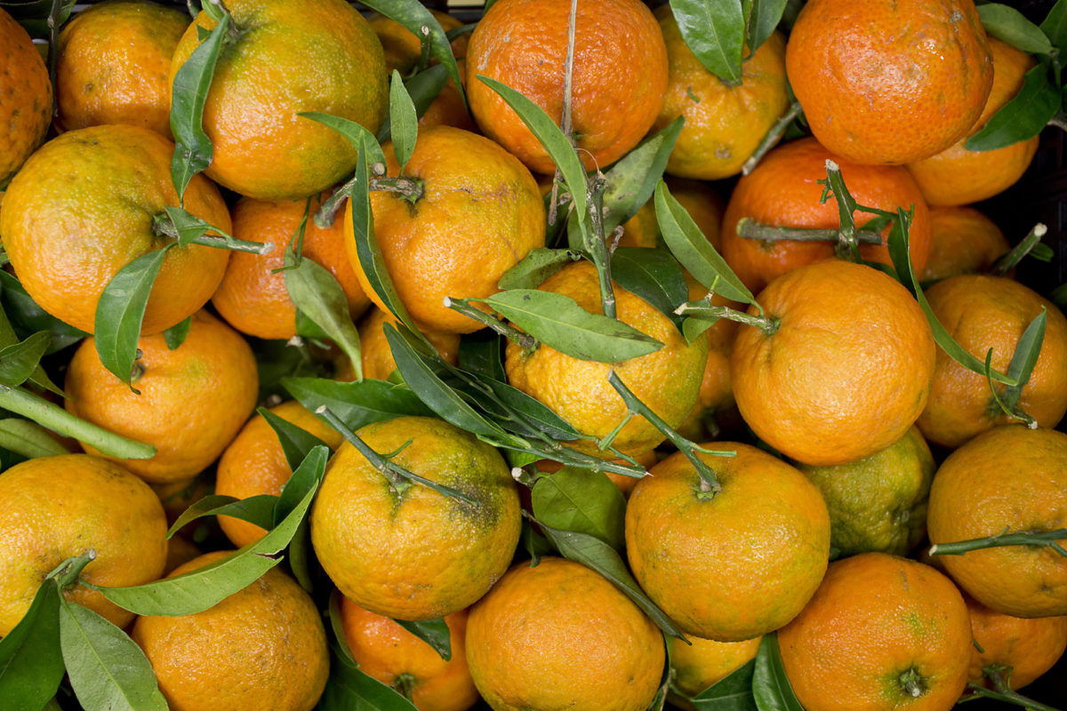Fruit And Vegetable Market Report November 2014 Clementine