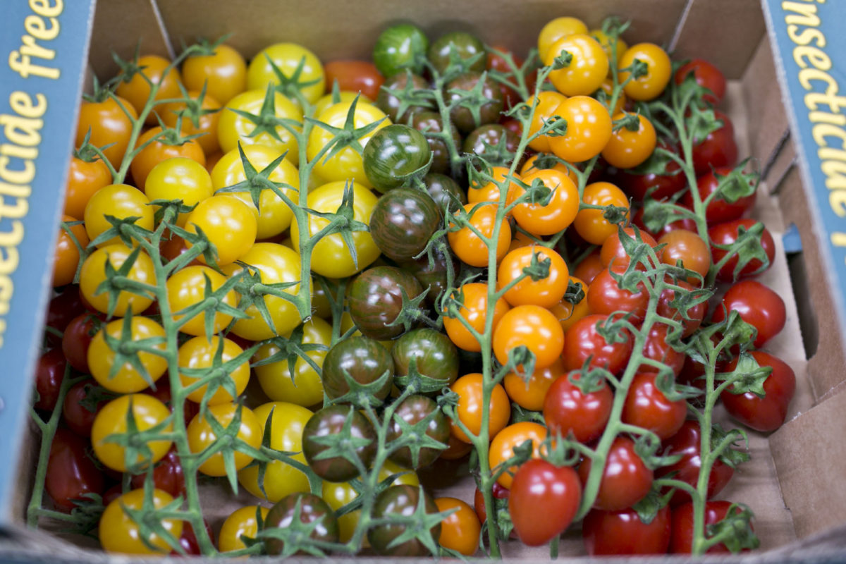 Fruit And Vegetable Market Report April 2015 Tomatoes