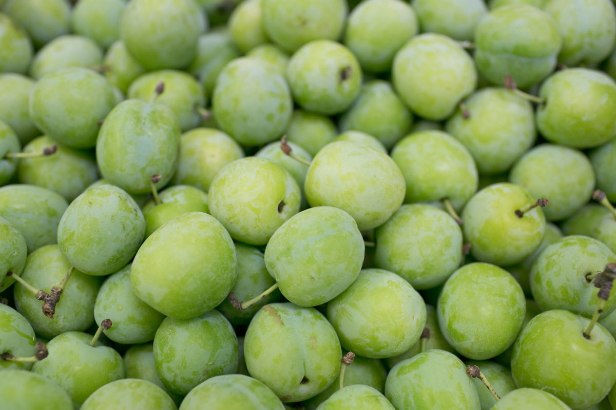 Fruit And Vegetable Market Report August 2014 Greengages