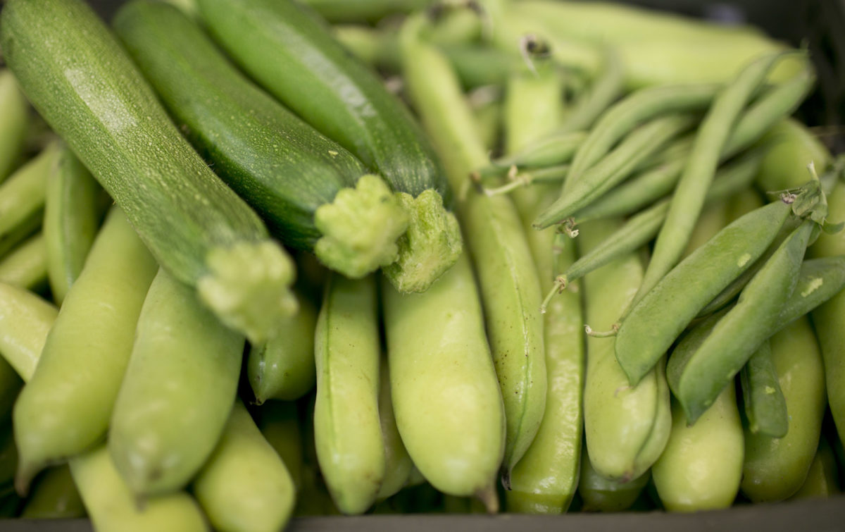 Fruit And Vegetable Market Report August 2014 Legumes