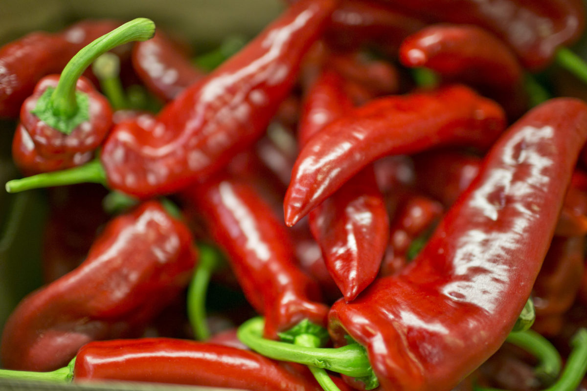 Fruit And Vegetable Market Report August 2014 Romano Peppers