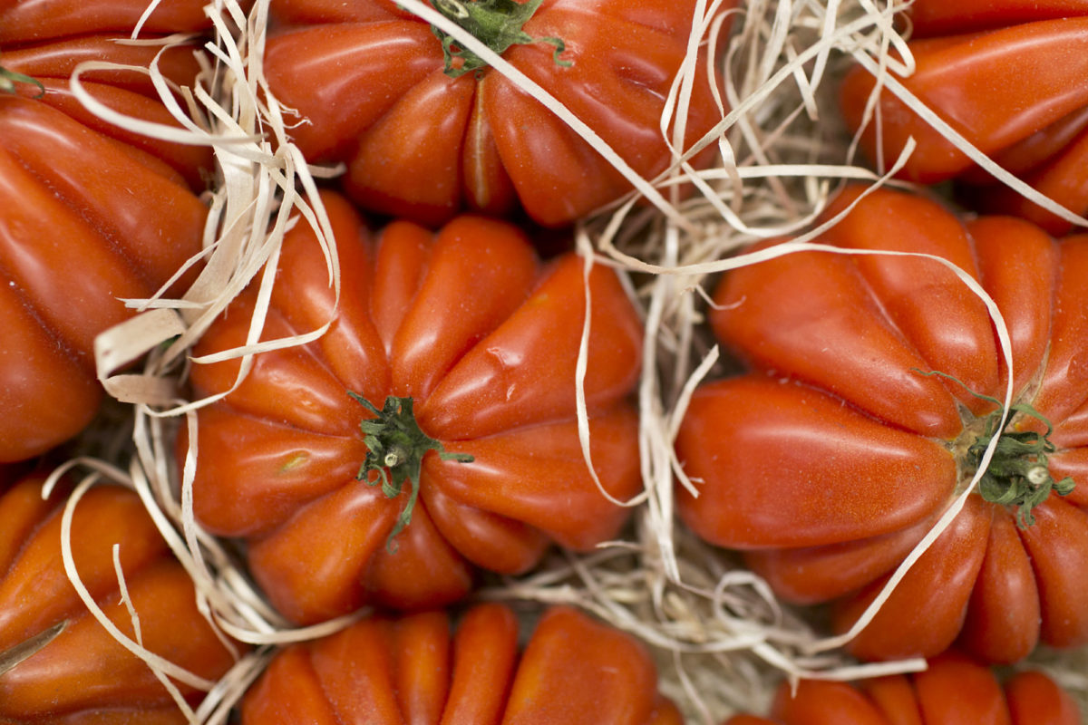 Fruit And Vegetable Market Report August 2015 Beefsteak Tomatoes