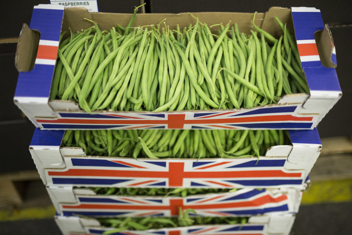 Fruit And Vegetable Market Report August 2016 Bobby Beans
