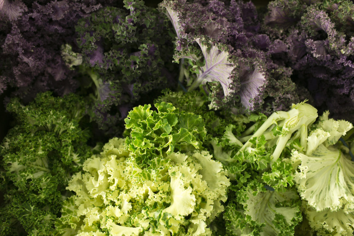 Fruit And Vegetable Market Report December 2014 Kale