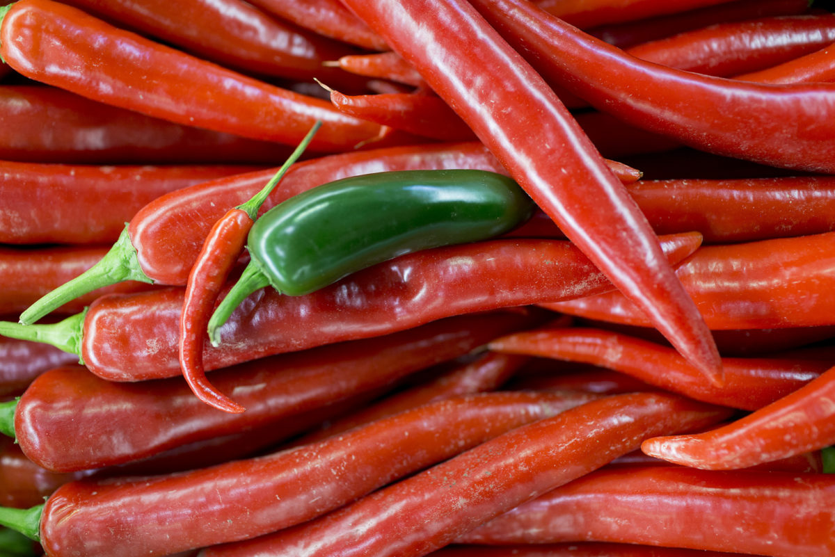 Fruit And Vegetable Market Report December 2016 Chillies