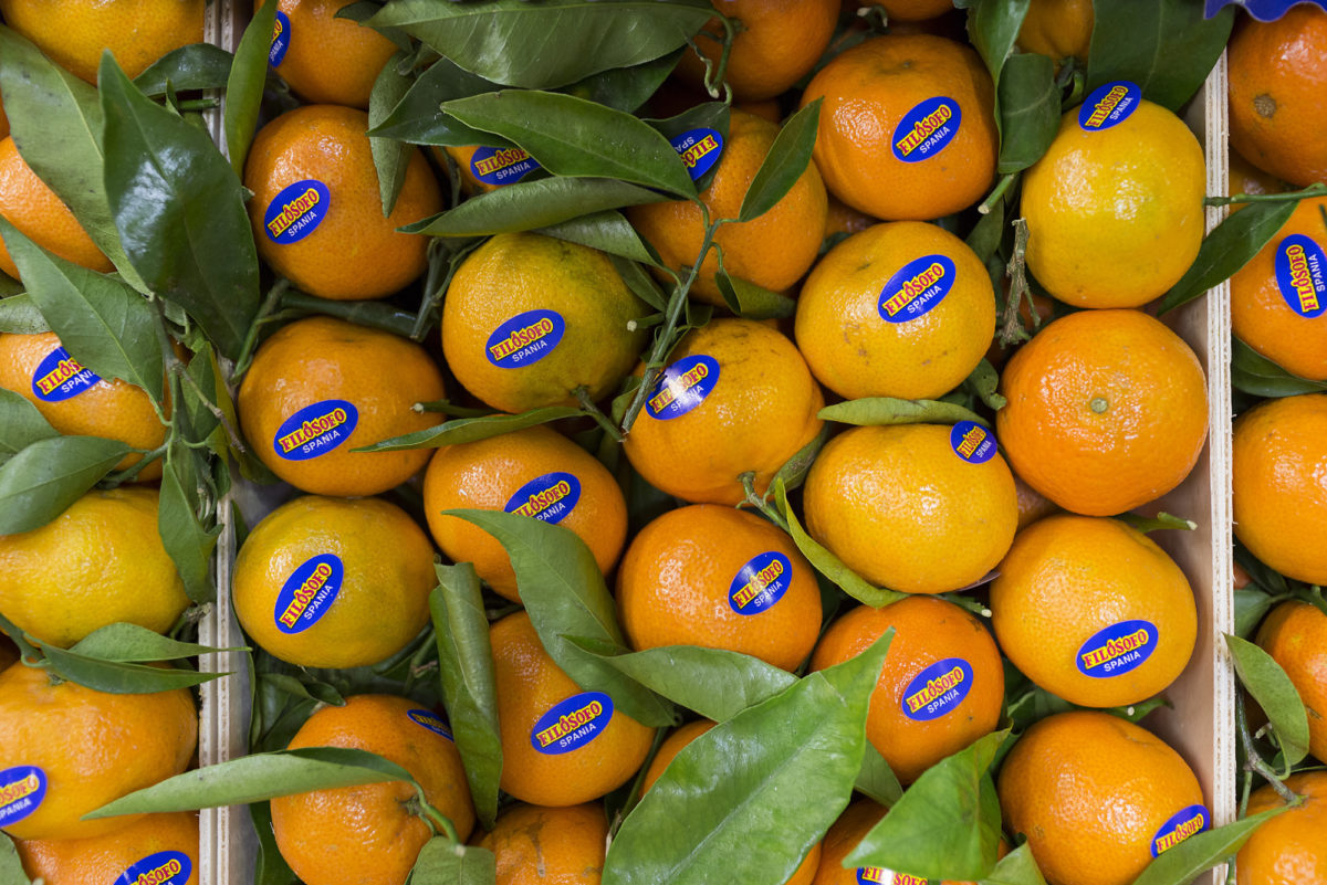 Fruit And Vegetable Market Report December 2016 Clementines