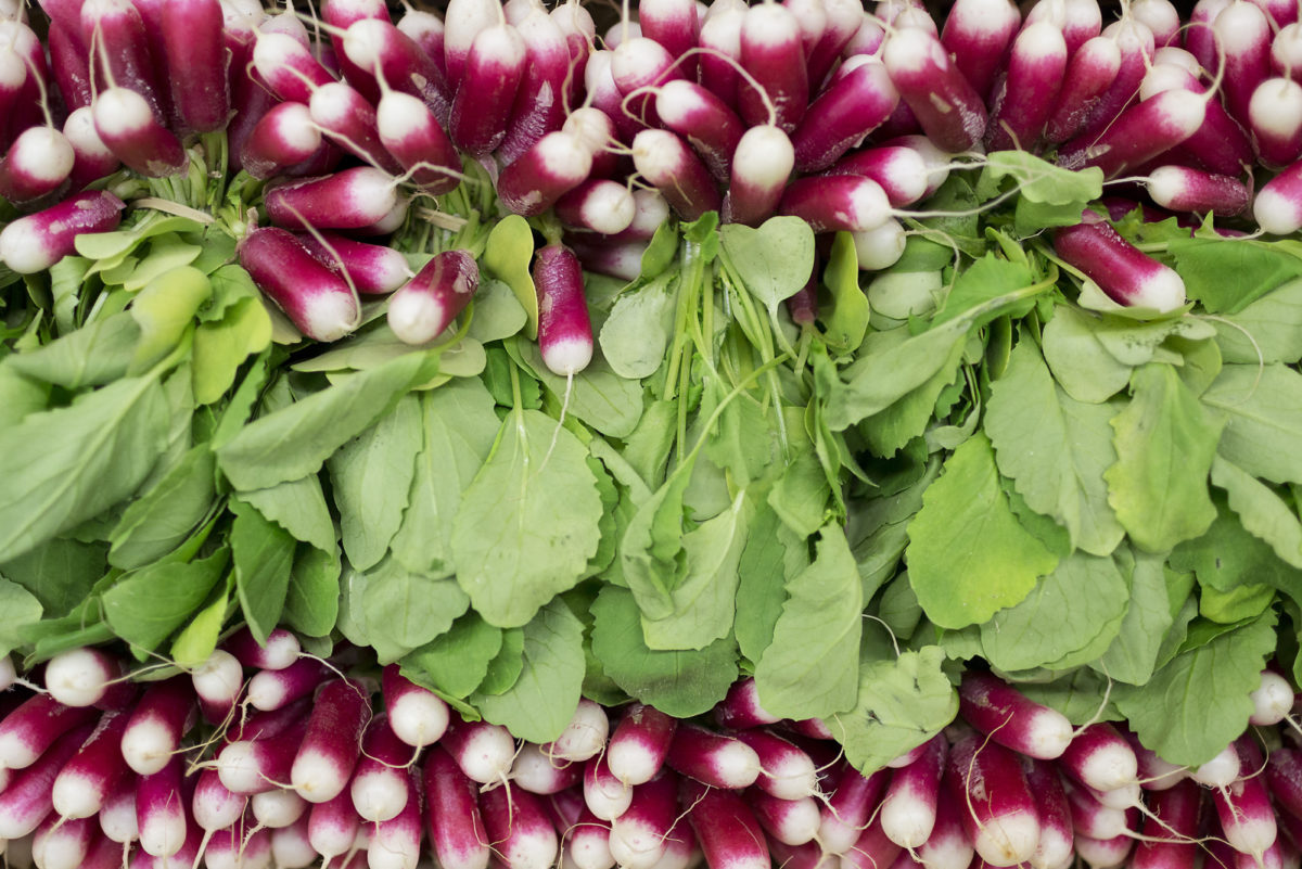 Fruit And Vegetable Market Report December 2016 Radishes