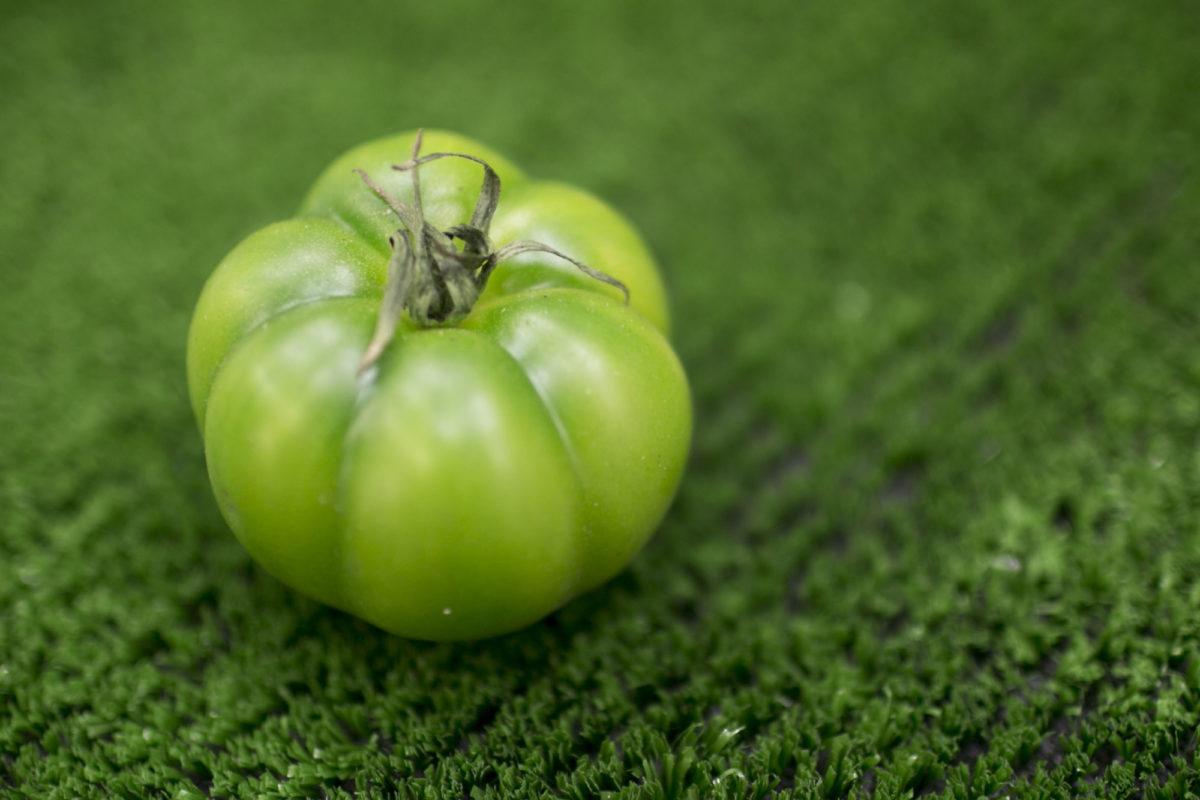 Fruit And Vegetable Market Report February 2015 Marinda Tomato