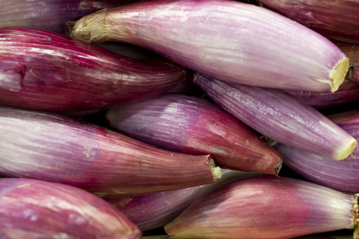 Fruit And Vegetable Market Report July 2014 Banana Shallots