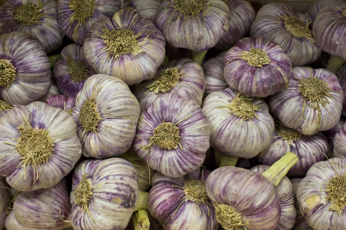 Fruit And Vegetable Market Report July 2014 Garlic