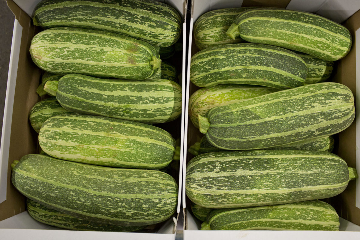 Fruit And Vegetable Market Report July 2014 Marrows