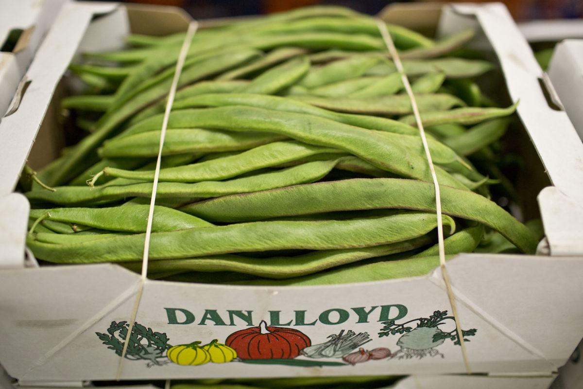 Fruit And Vegetable Market Report July 2014 Runner Beans
