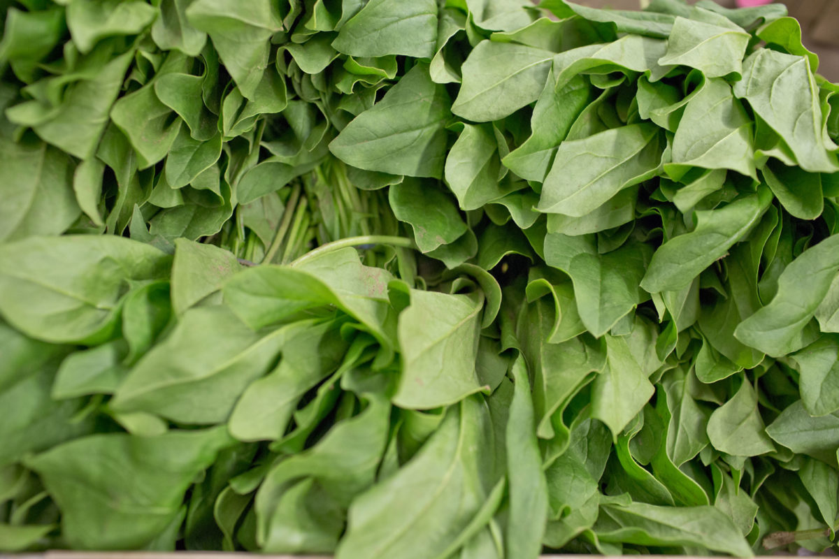 Fruit And Vegetable Market Report July 2014 Spinach