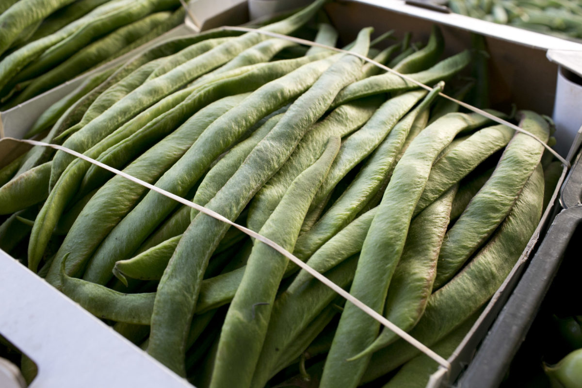 Fruit And Vegetable Market Report July 2015 Runner Beans