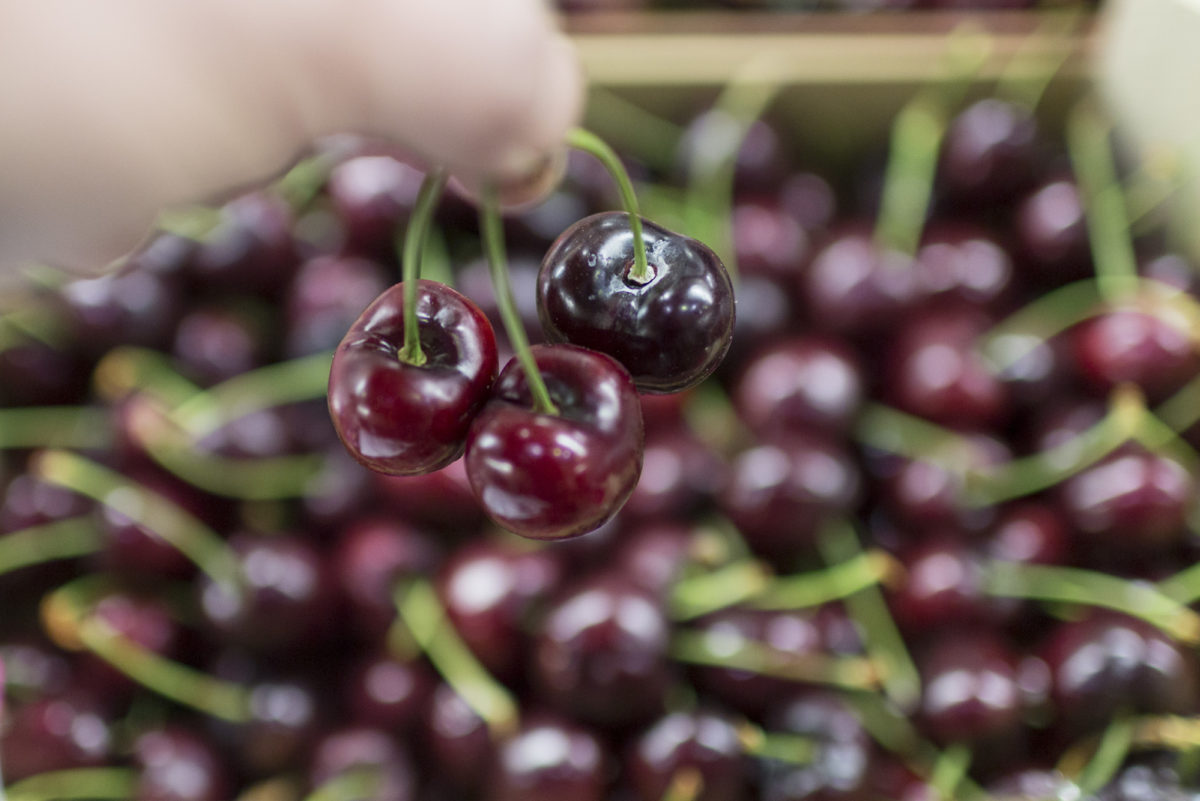 Fruit And Vegetable Market Report July 2016 Cherries
