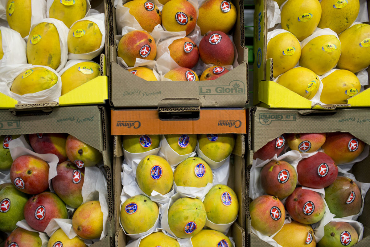Fruit And Vegetable Market Report June 2014 Mangoes