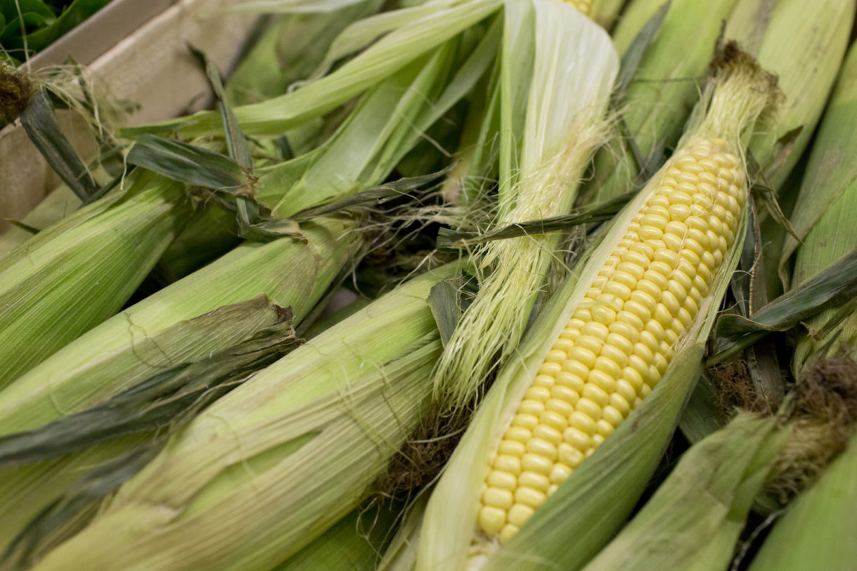 Fruit And Vegetable Market Report June 2014 Sweetcorn