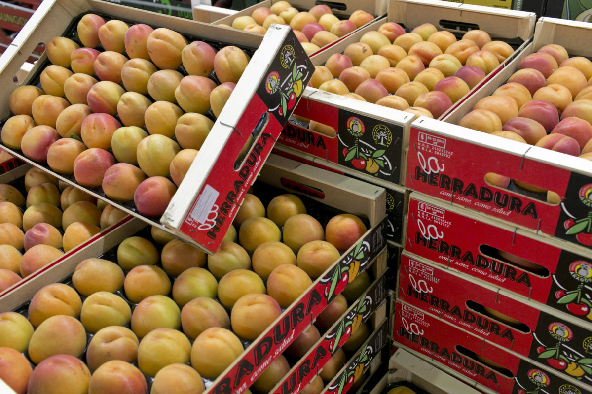 Fruit And Vegetable Market Report June 2015 Apricots Pallet