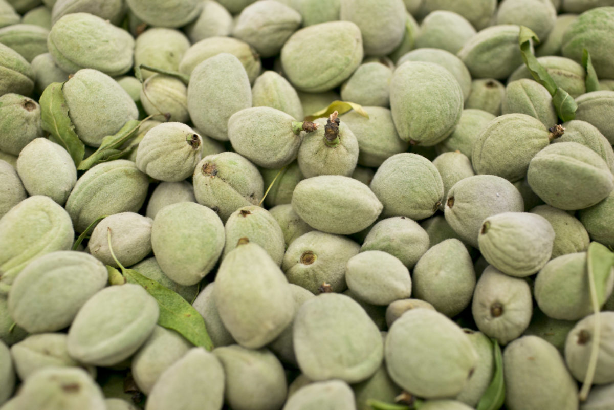Fruit And Vegetable Market Report June 2015 Green Almonds