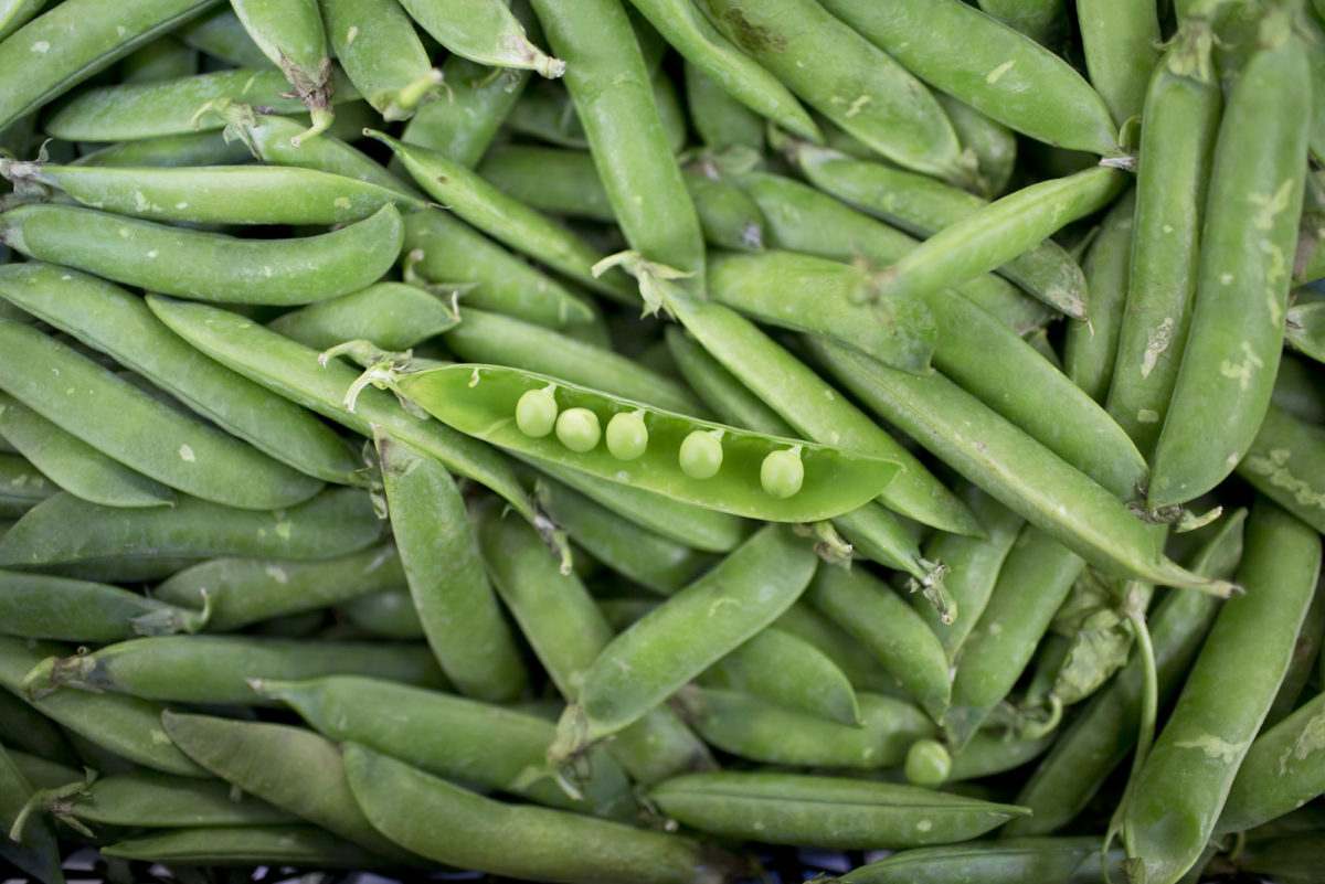 Fruit And Vegetable Market Report June 2016 Peas