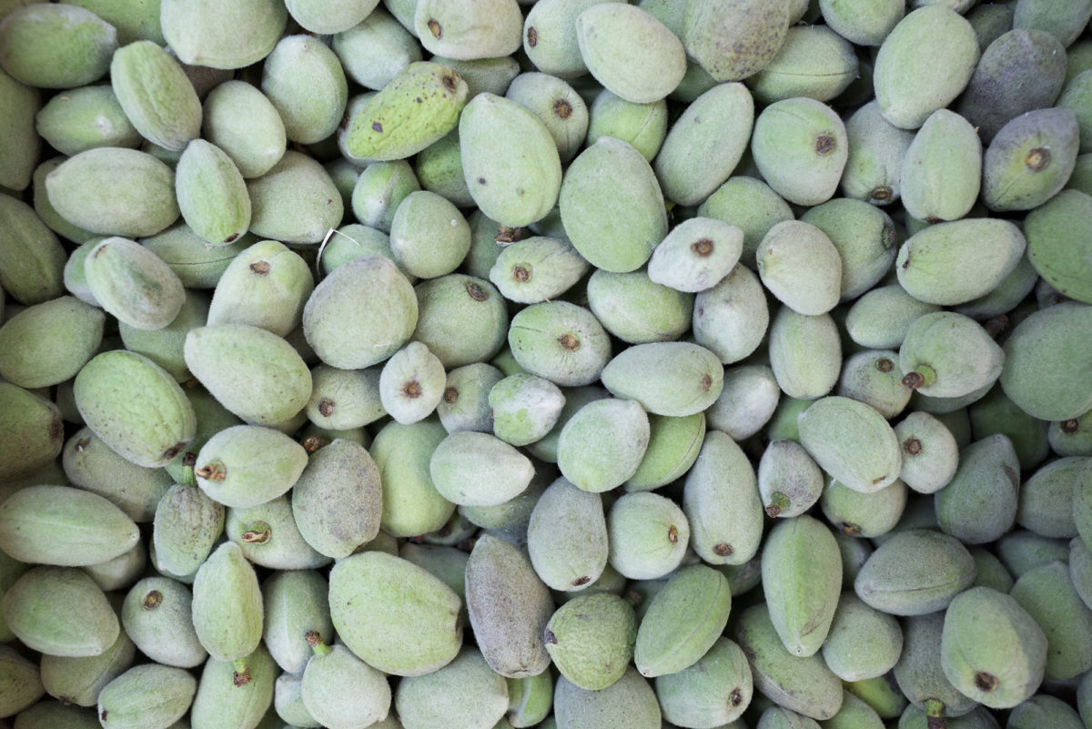 Fruit And Vegetable Market Report June 2017 Fresh Almonds