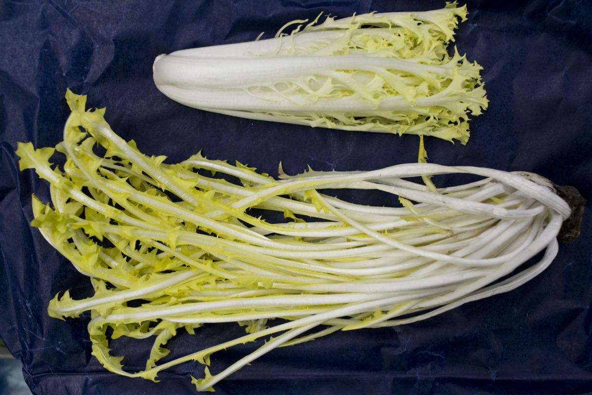 Fruit And Vegetable Market Report March 2015 Friseline