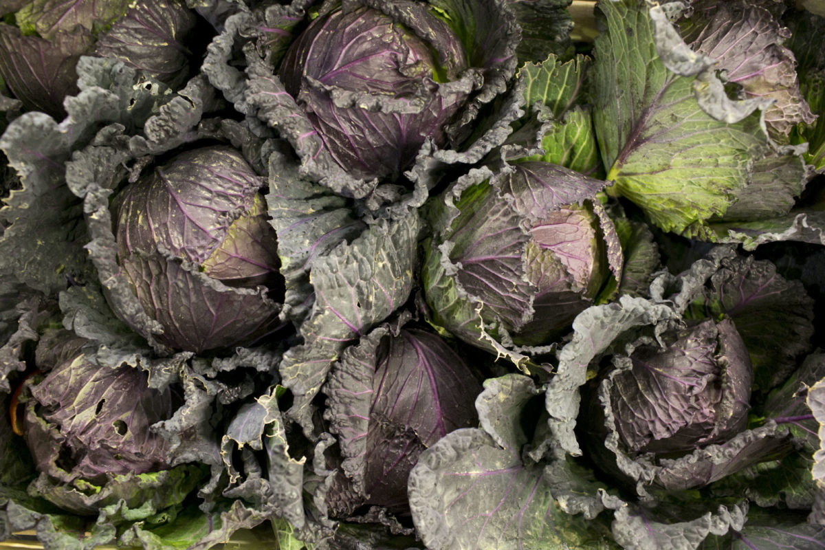 Fruit And Vegetable Market Report March 2015 January King