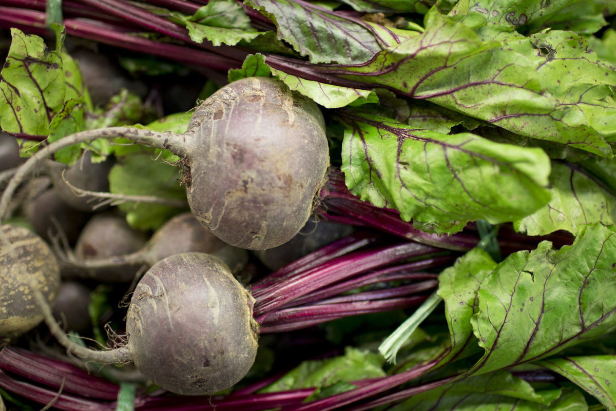 Fruit And Vegetable Market Report March 2016 Beetroot