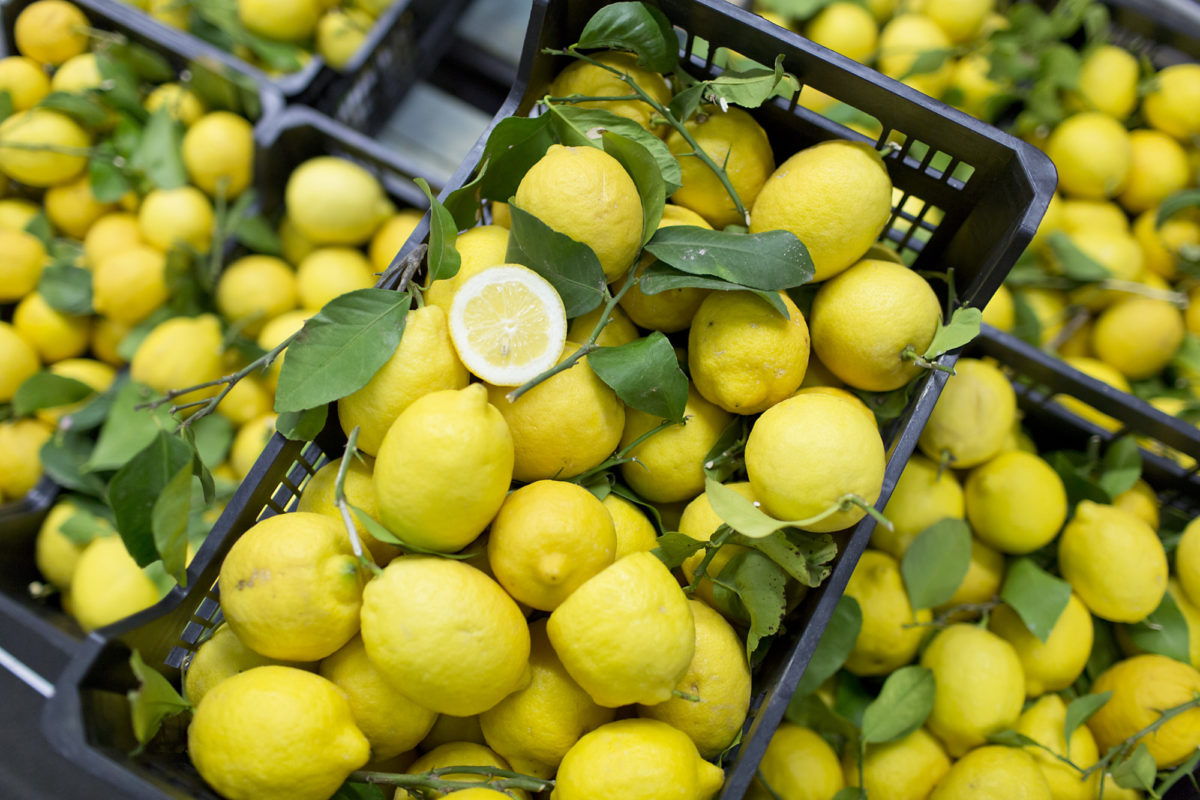 Fruit And Vegetable Market Report March 2016 Lemons