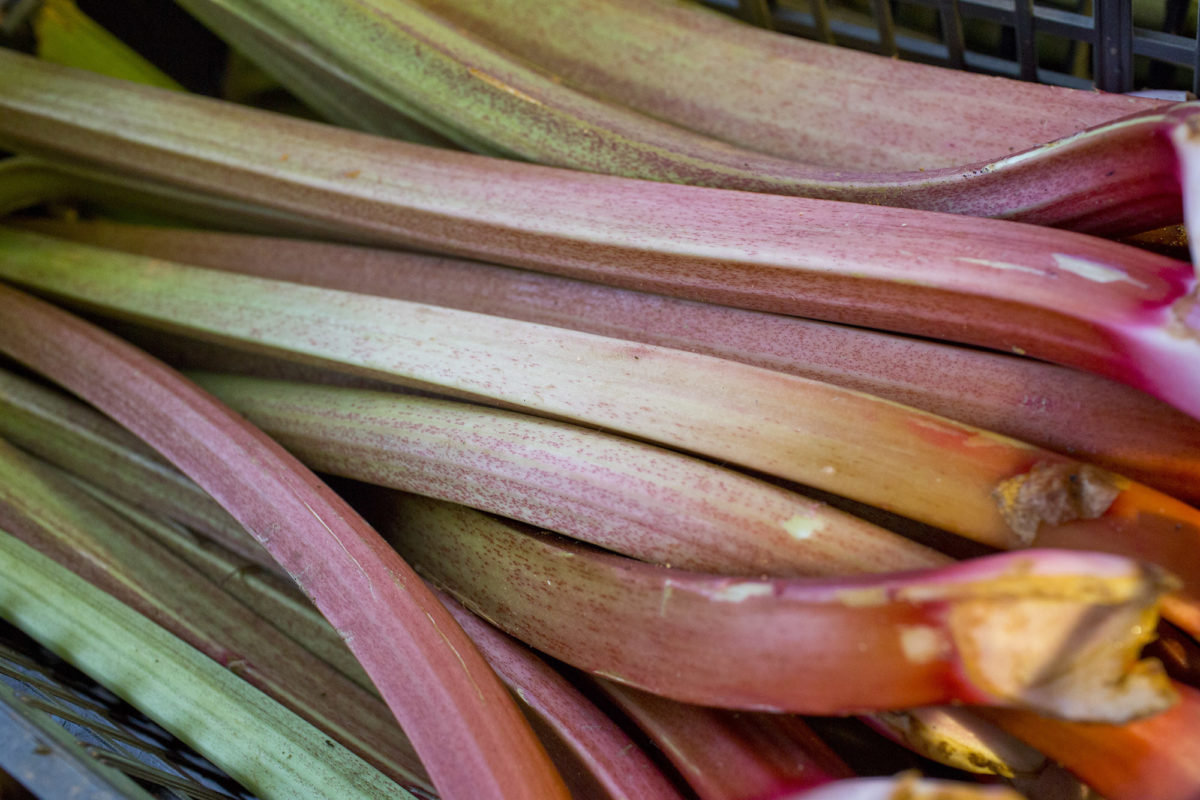 Fruit And Vegetable Market Report May 2014 Rhubarb