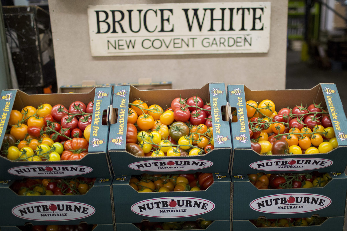 Fruit And Vegetable Market Report May 2014 Tomatoes