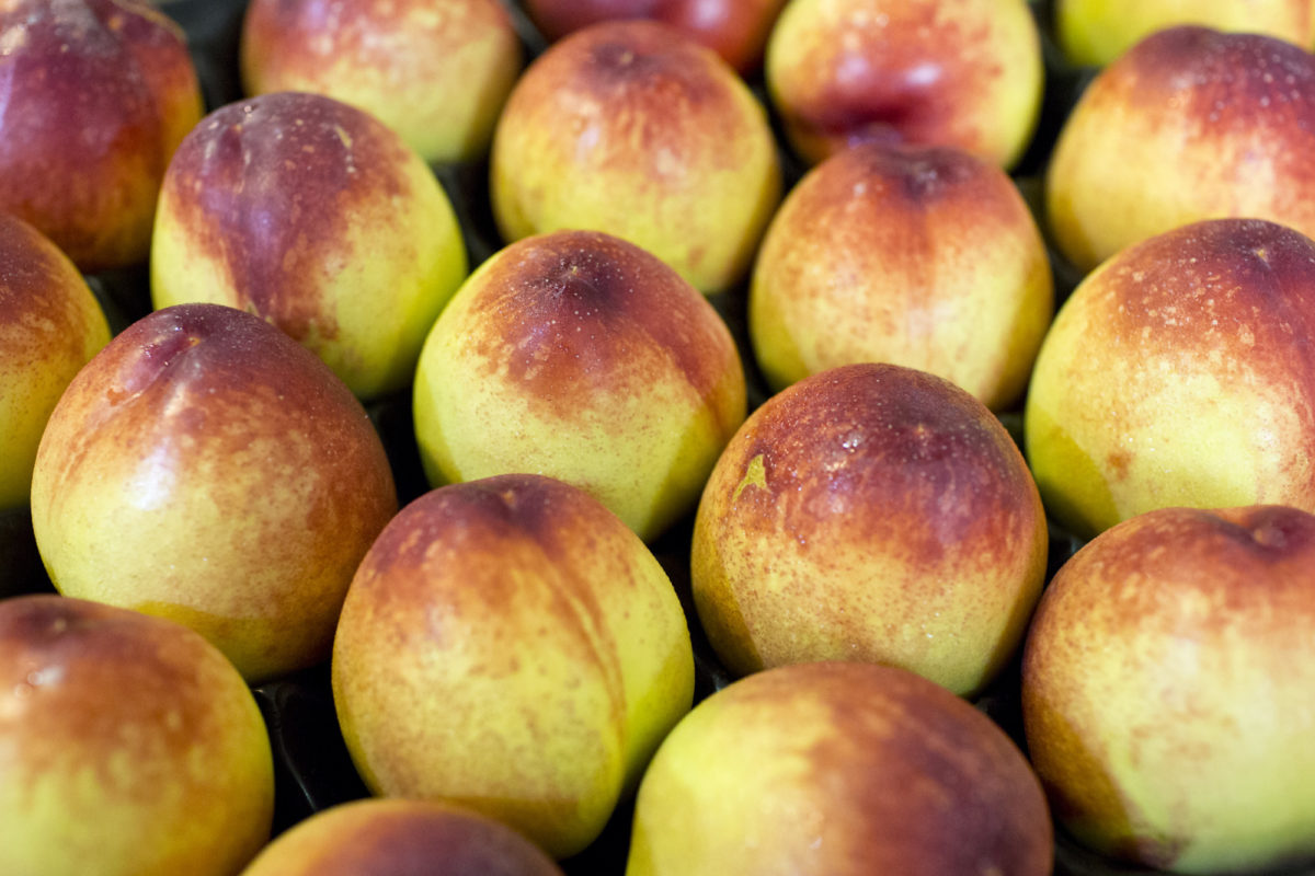 Fruit And Vegetable Market Report May 2015 Nectarines