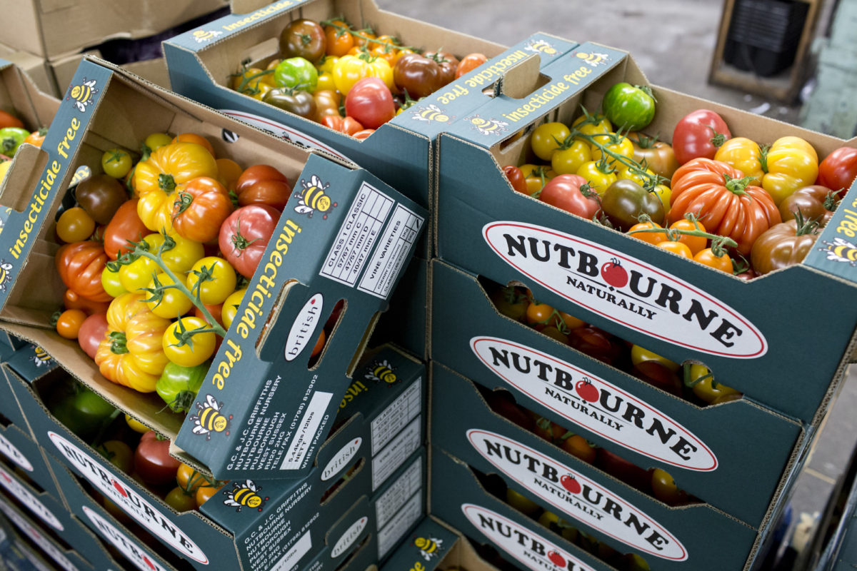 Fruit And Vegetable Market Report May 2015 Nutbourne Tomatoes Close Up