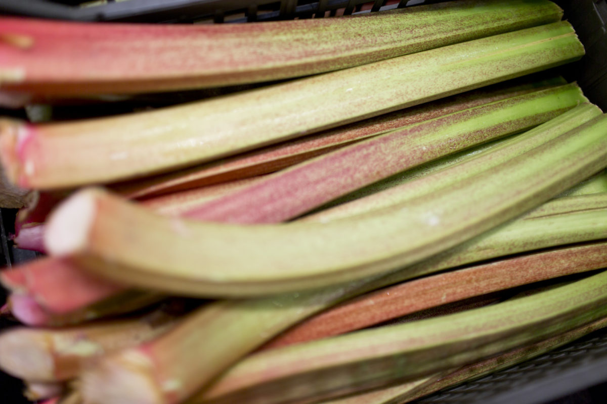 Fruit And Vegetable Market Report May 2015 Outdoor Rhubarb