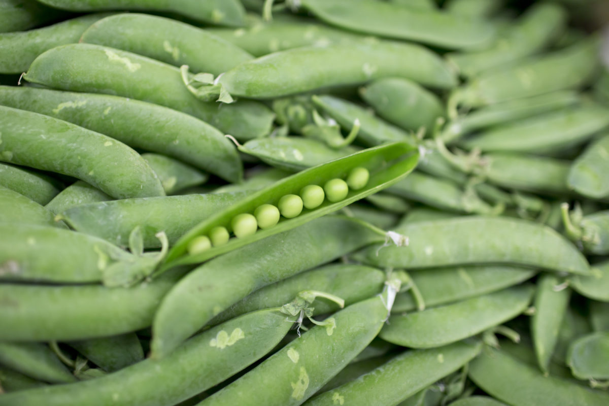 Fruit And Vegetable Market Report May 2015 Podded Peas
