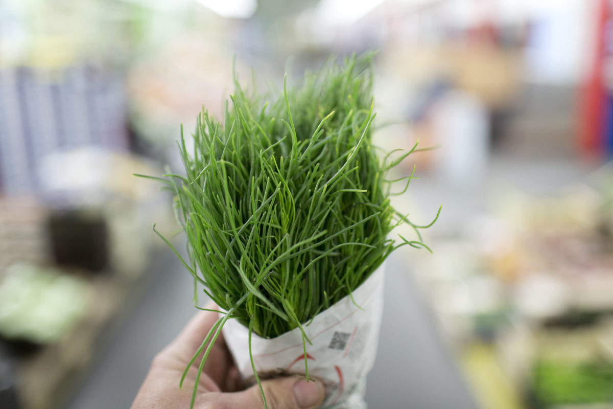 Fruit And Vegetable Market Report May 2016 Agretti